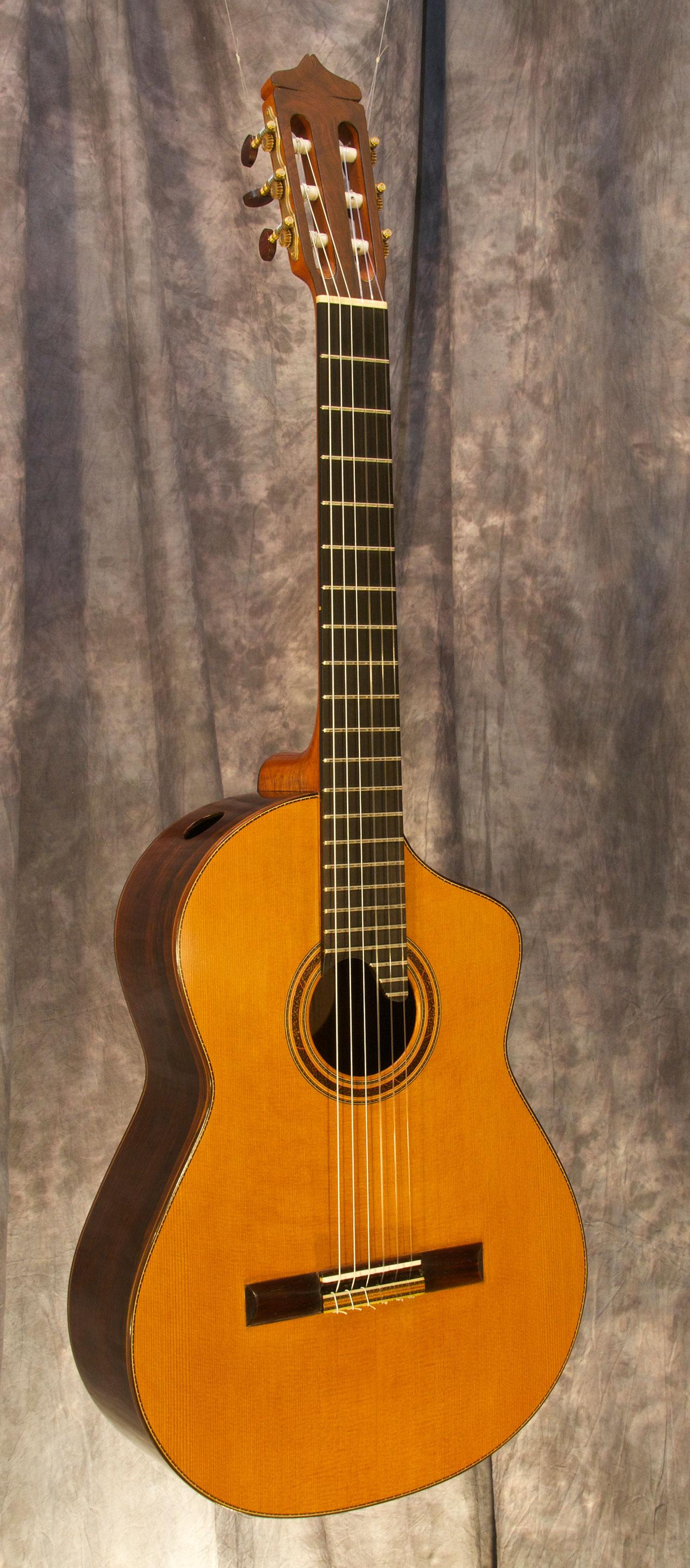 dake traphagen luthier guitars for sale. Black Bedroom Furniture Sets. Home Design Ideas