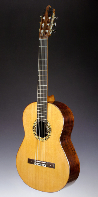 35th Anniversary Series Guitar